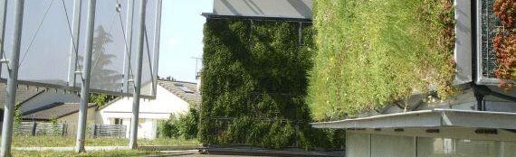 cadiou invente le portail ouverture papillon jardins et exterieurs. Black Bedroom Furniture Sets. Home Design Ideas