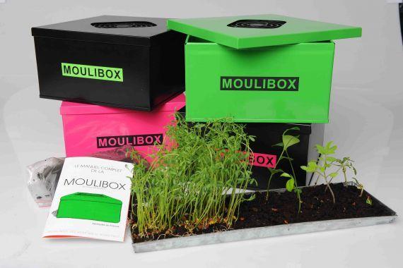 moulibox le mini lombricomposteur d 39 int rieur insolite. Black Bedroom Furniture Sets. Home Design Ideas