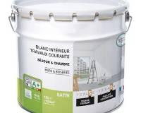 Quel type de peinture choisir pour vos murs, plafonds et boiseries ?