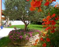 + de 15 idées pour fleurir votre jardin