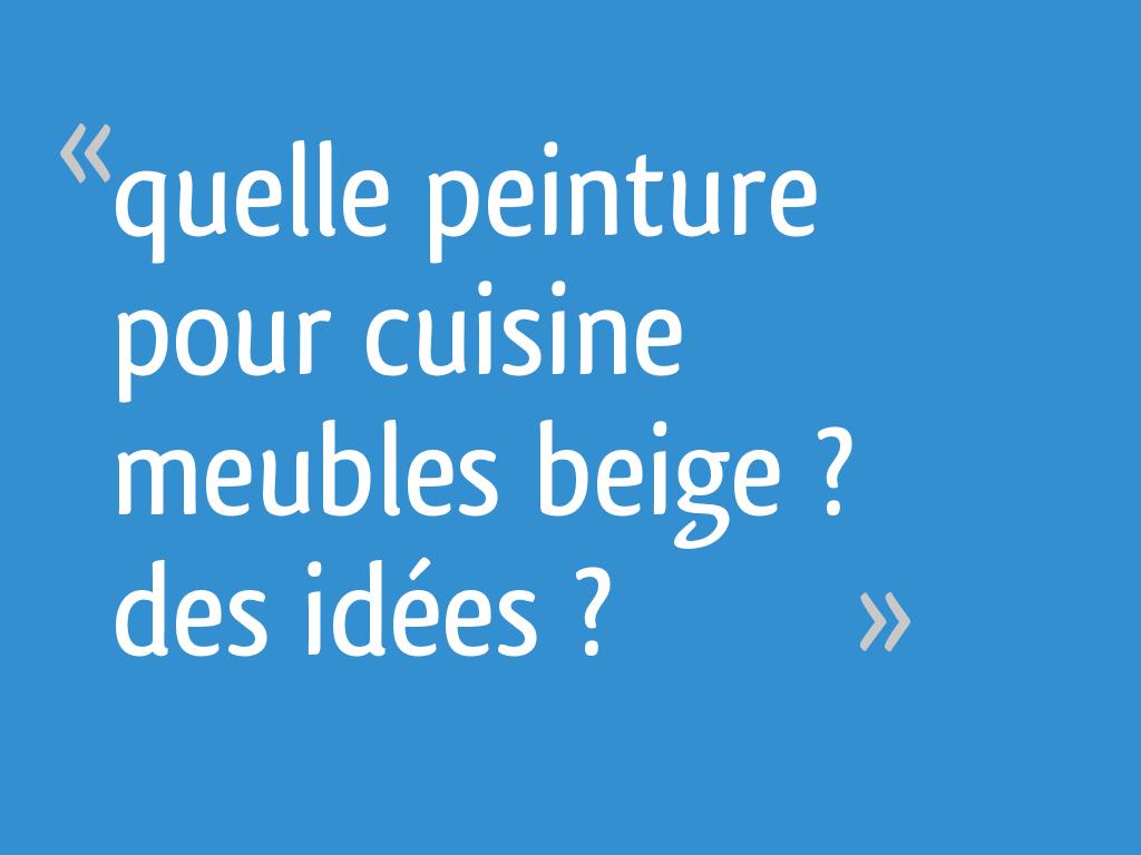 Quelle Peinture Pour Cuisine Meubles Beige Des Idees 20 Messages