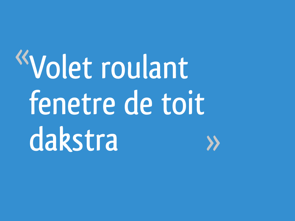 Volet Roulant Fenetre De Toit Dakstra