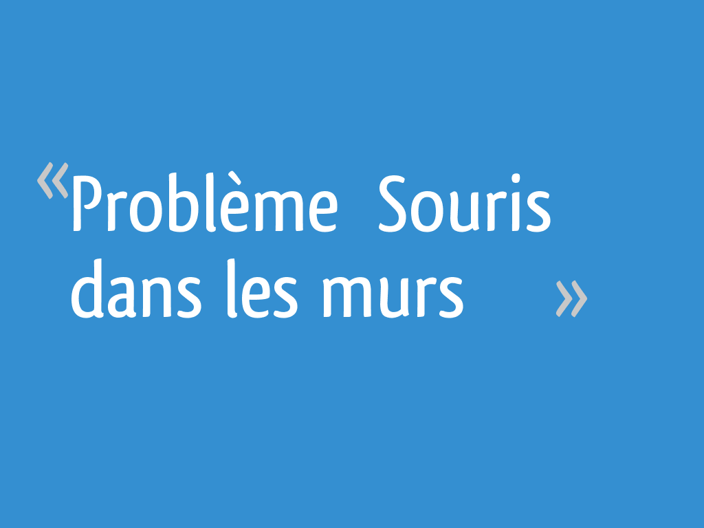 """Souris Dans Les Murs Comment Faire problème """" souris dans les murs"""" - 23 messages"""