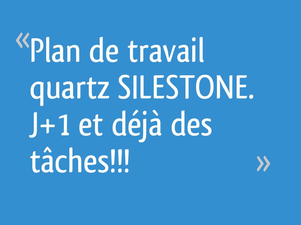 Plan De Travail Quartz Resistance Chaleur plan de travail quartz silestone. j+1 et déjà des tâches