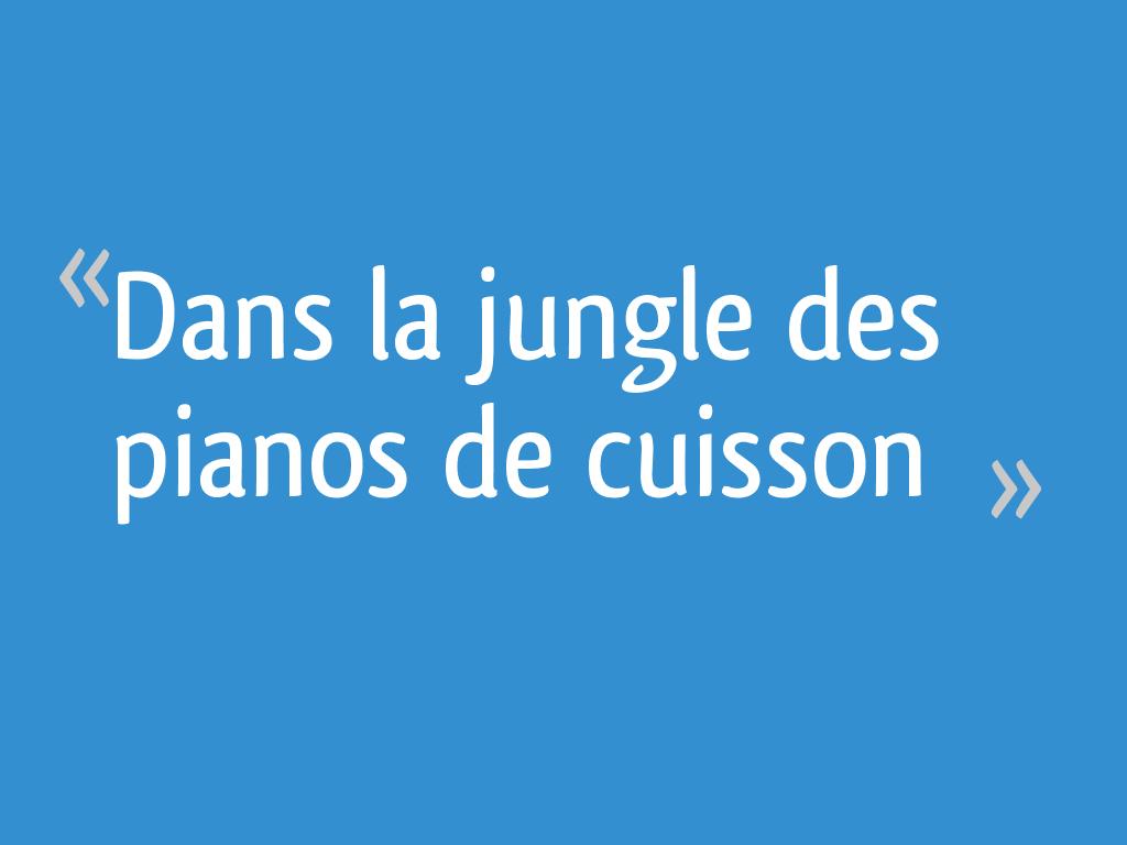 Piano De Cuisine Pas Cher dans la jungle des pianos de cuisson - 21 messages