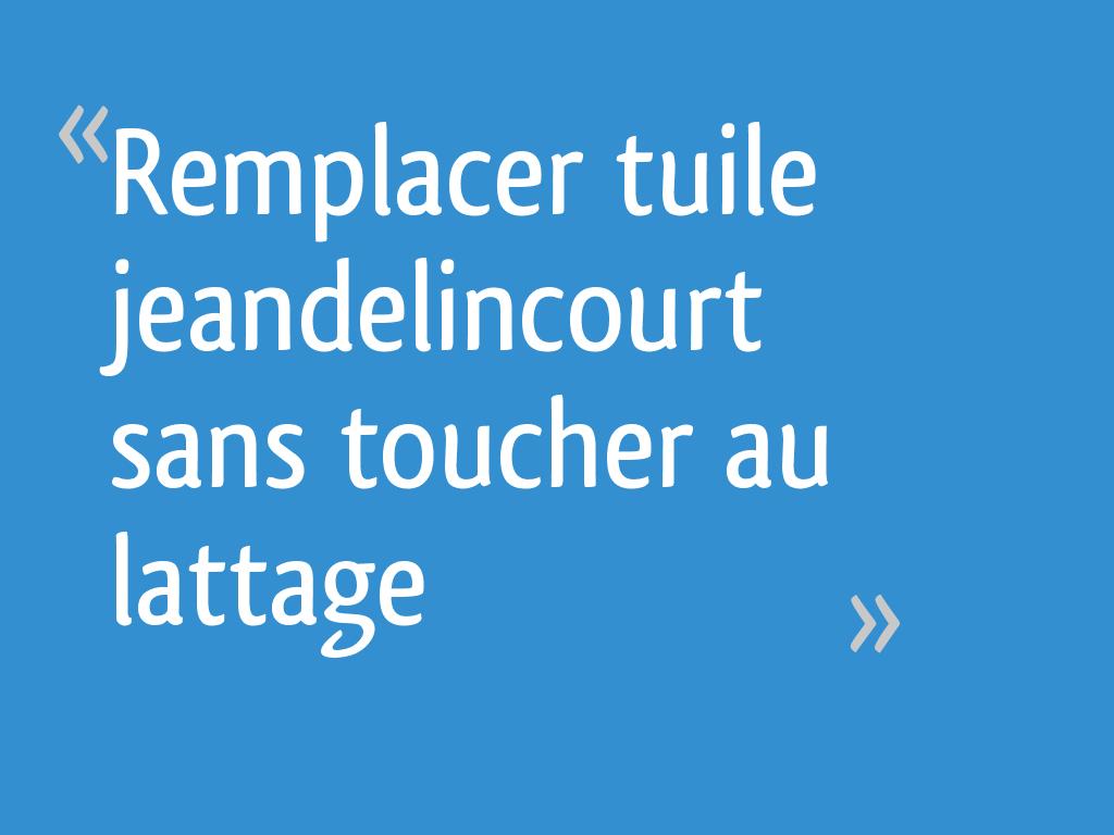 Remplacer Tuile Jeandelincourt Sans Toucher Au Lattage 4