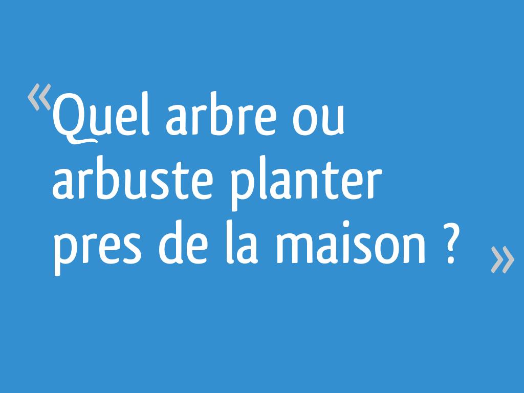 Quel Arbre Ou Arbuste Planter Pres De La Maison 27 Messages