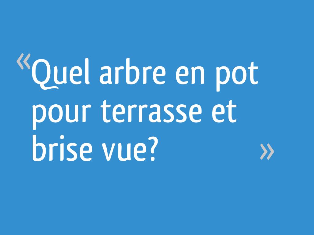 Arbre En Pot Terrasse quel arbre en pot pour terrasse et brise vue? - 8 messages