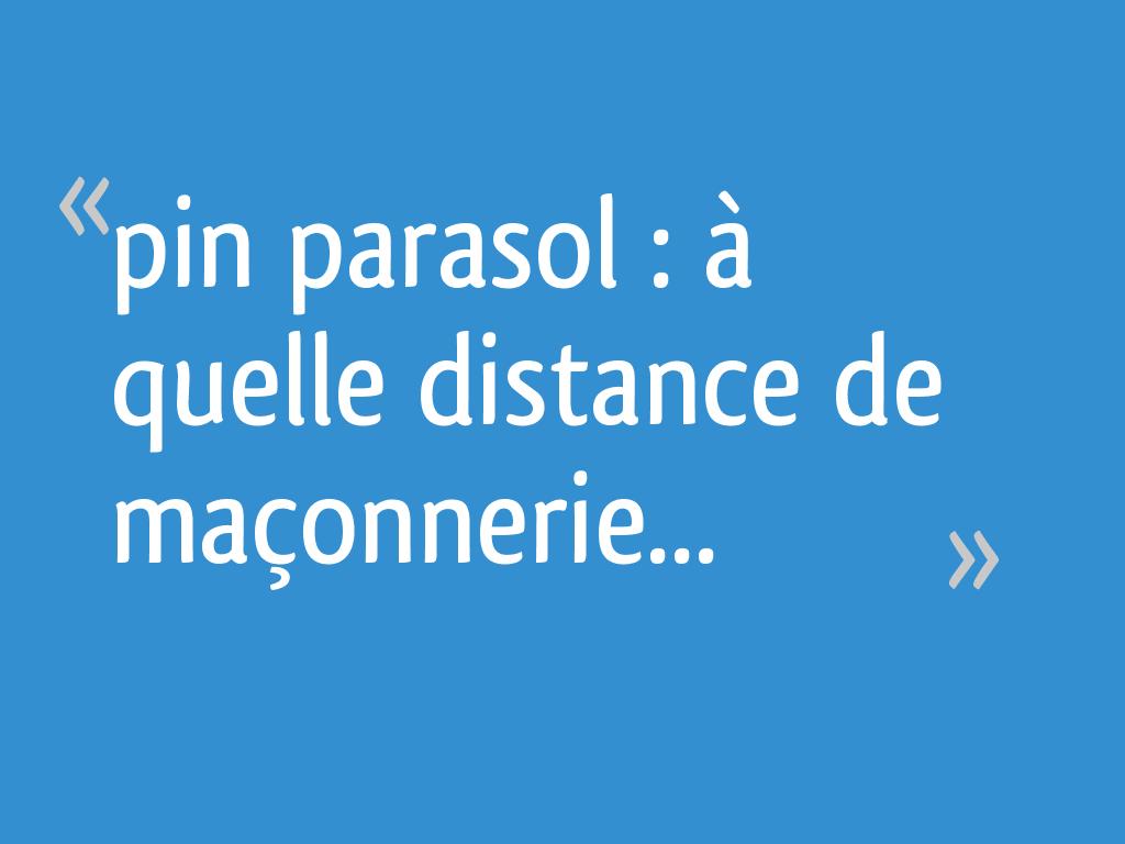 Pin Parasol Distance Maison pin parasol : à quelle distance de maçonnerie - 6 messages