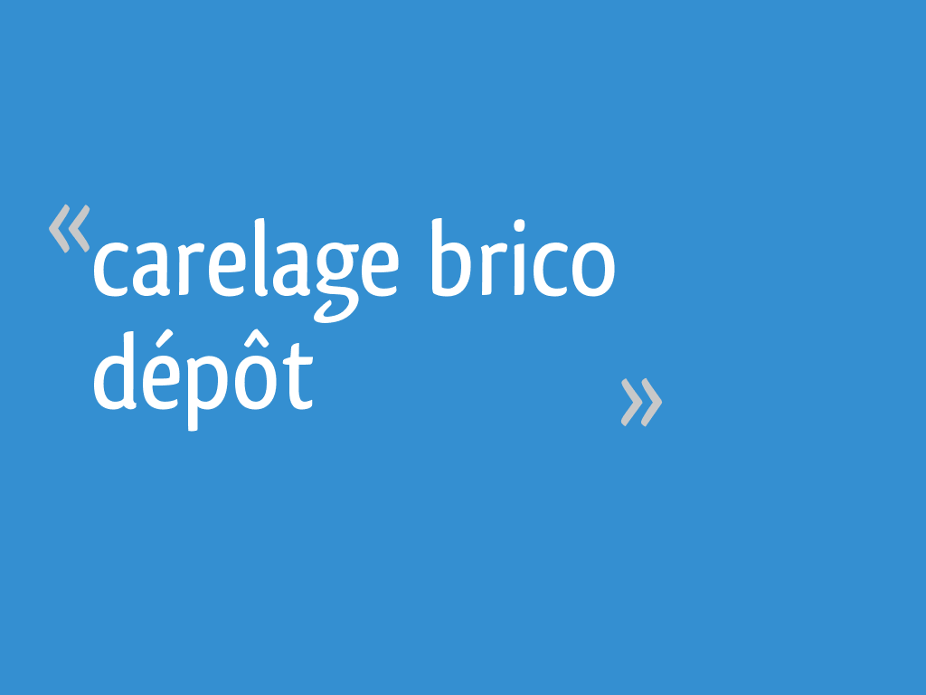 Carelage Brico Depot 12 Messages