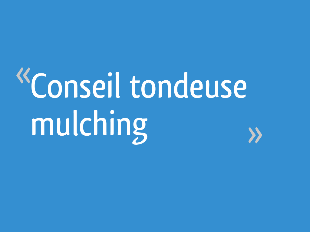 Conseil Tondeuse Mulching 15 Messages