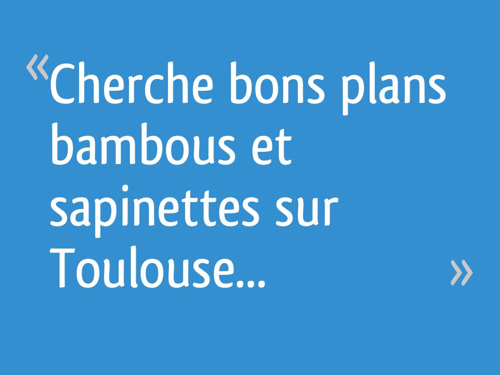 Jardinerie Pas Cher Toulouse cherche bons plans bambous et sapinettes sur toulouse
