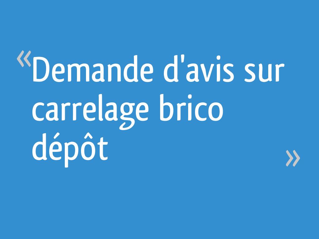 Demande D Avis Sur Carrelage Brico Depot 11 Messages