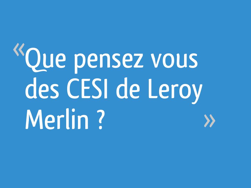 Que Pensez Vous Des Cesi De Leroy Merlin 4 Messages